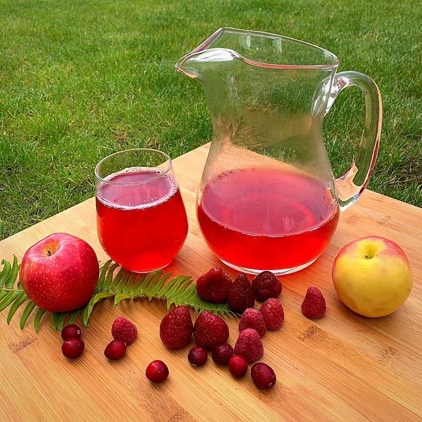 Enjoy the fresh sugar-free Kompot with your kids and family!
